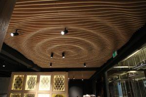 Параметрически потолок Volume Form